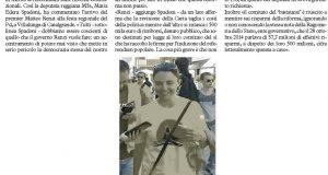 Spadoni Renzi Riforma il Resto del Carlino