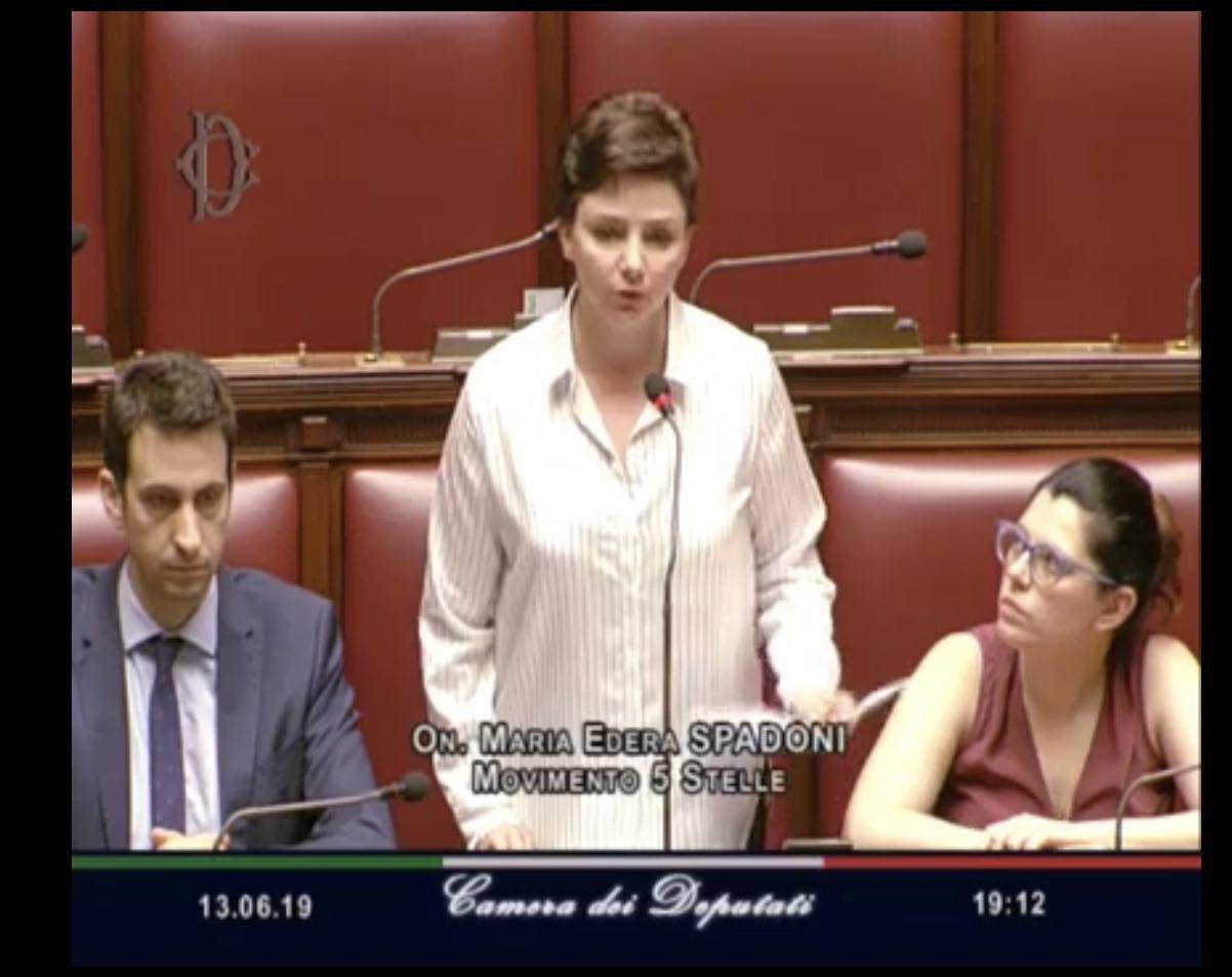 """Spadoni (M5S): """"Perquisizioni GDF Comune Reggio Emilia, il Sindaco Vecchi faccia chiarezza"""""""