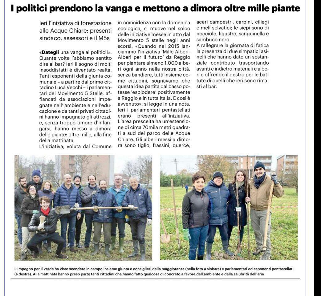 """Rs, Spadoni (M5S): """"Messi a dimora 1065 alberi. Alberi e ambiente non hanno colore politico"""""""